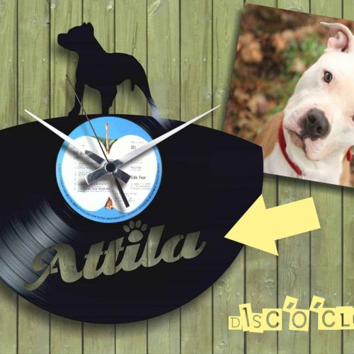 orologio in vinile pitbull custom clock